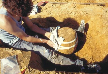 Bernd Steffens umhüllt eine Urne mit Gips.