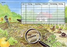 Stundenplan Kompost