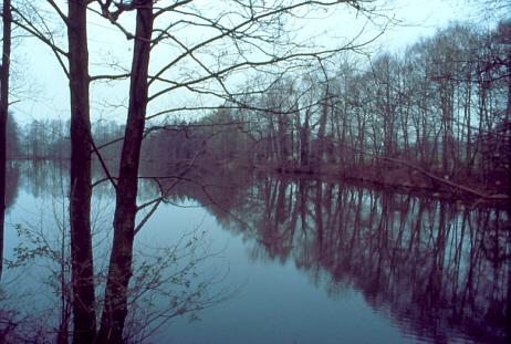 Teich bei Lehringen