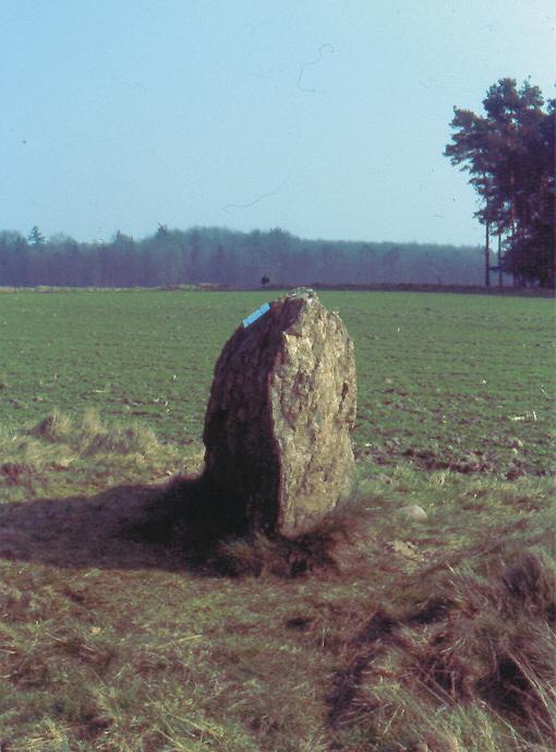Der letzte Stein vom letzten Großsteingrab im ganzen Landkreis Verden.