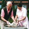Helmut und Gerda Storch